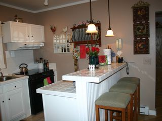 Lake Sinissippi cottage photo - Well-equipped kitchen w breakfast bar opens onto porch w garden views