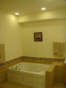 Lower level master bathroom with Jacuzzi