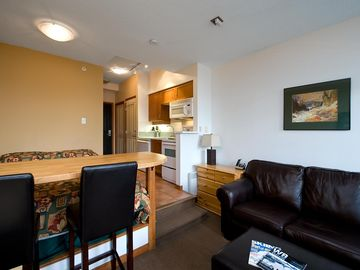 Whistler condo rental - This well apointed space has a queen bed, kitchen, living area, breakfast bar, bathroom, two closets and a leather pull out couch.