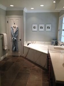 Master Bath tub view