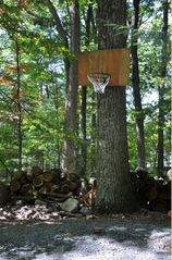 Lake Wallenpaupack cabin photo - Basketball area
