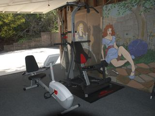 BowFlex and recumbent bike with TV in garage.