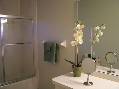 Guest bath with glass shower door and vanity.