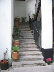 the main flight of stairs leading to the first floor