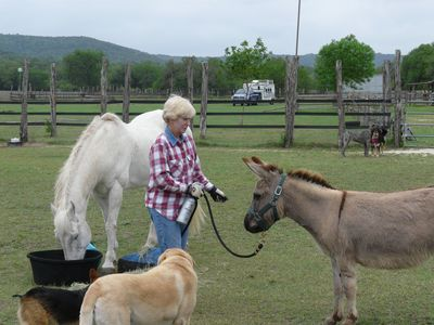 Owner Julie Elise with a few of the ranch residents