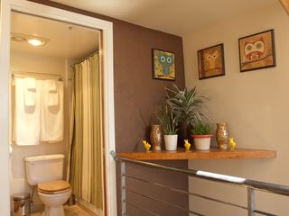 San Francisco townhome photo - The treehouse suite bathroom