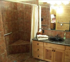 Pagosa Springs house photo - Moose Room Handicap Accessible Bathroom with High Toilet and Grab Bars Level 1