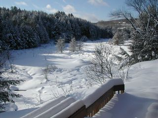 Quechee cabin photo - Winter View From Deck