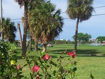 Lake Worth cottage rental - Watch the golfers from the back porch.