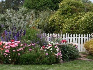 Santa Cruz house photo - Beautiful coastal garden setting