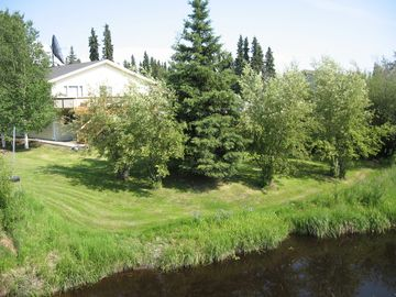 Fairbanks apartment rental - Beaver, ducks, and muskrats love to come up into this inviting grassy yard
