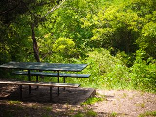 Austin condo photo - Picnic/BBQ right on one of Austin's great greenbelts...