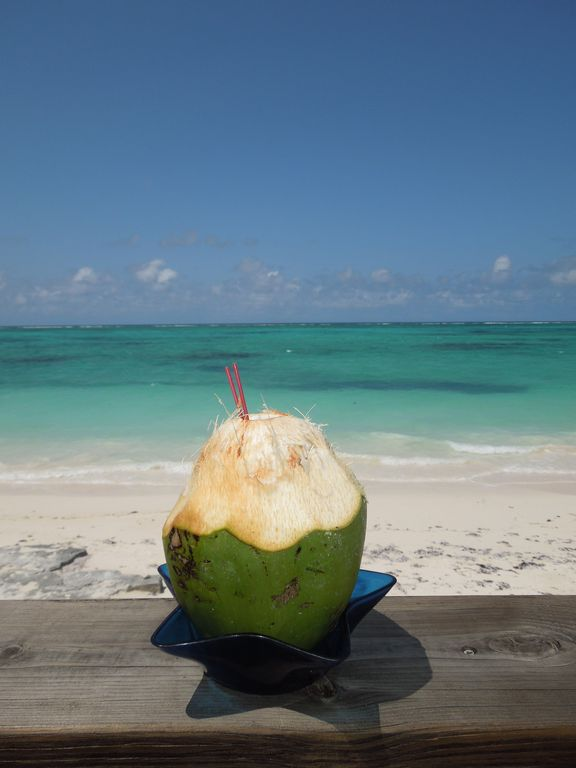 Stop at the Barracuda Beach Bar to enjoy a refreshing coconut drink.