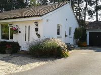 Stylish holiday cottage near Poole Harbour, no smoking, on one level