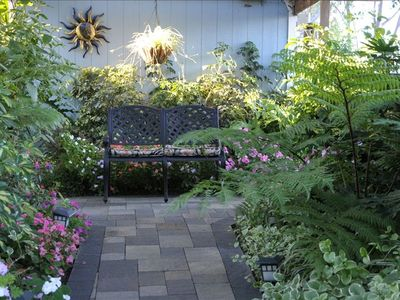Backyard shade garden