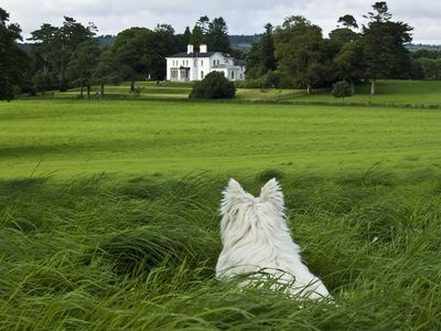 Coolclogher House from  grounds look the other way to see the lakes of Killarney