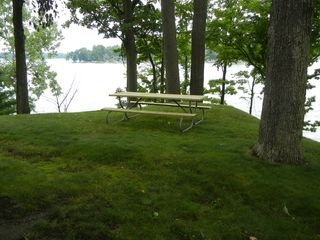Watervliet property rental photo - Lunch on the lake!