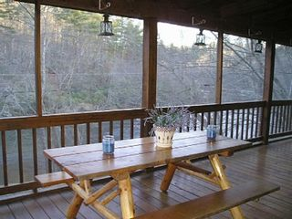 Ellijay cabin photo - The picnic table offers additional eating space.