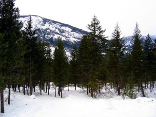 Mazama cabin photo - Winter View
