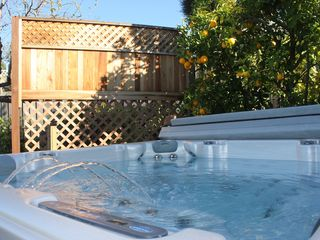 West Coast Villa new 7 person jetted Hot Tub Spa surrounded by Orange trees