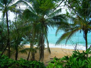 Bocas del Toro cabin photo - private beach