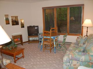 Massanutten house photo - Downstairs bedroom family room with private entry