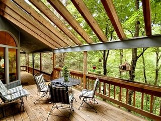 Maggie Valley chalet photo - Tree house views with 47ft.deck overlooking stream