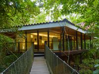 Modern Treehouse Surrounded By The Jungle With Hanging Bridge, Gym And Pool