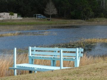 Spring Hill house rental - Dock in backyard