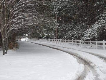 Wausau chateau / country house rental - Driveway through the pines.