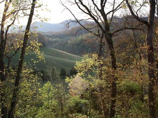 Sevierville cabin photo - Beautiful view from deck.