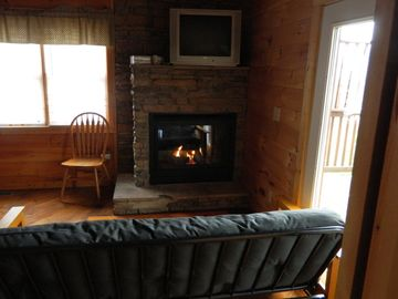 Den Downstairs with Gas Fireplace