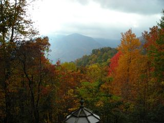 Maggie Valley cabin photo - Fall view, end of road, top of the mountain!
