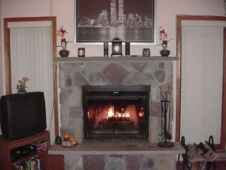 Bushkill house photo - Relax in Front of the Fireplace