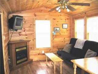 West Jefferson cabin photo - Living area w/ fireplace and Satellite TV
