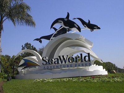 20 minutes from Sea World