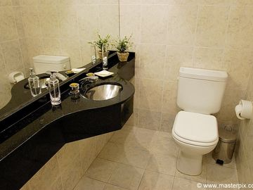 Downstairs guest bathroom has toilet and sink