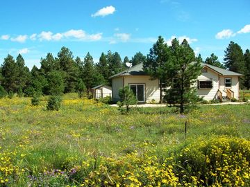 Parks cabin rental - Black-Eyed Susan's Cottage