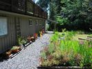 Garden Entrance with beautiful flowers! - Tofino studio vacation rental photo