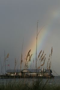 Wetland Pier with rainbow