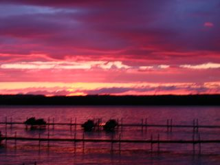 Burt Lake house photo - great sunsets