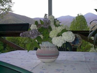 Lilacs and Snowballs make a perfect setting with purple mountains for a backdrop