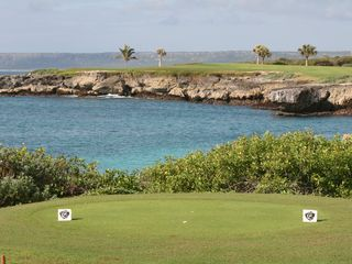 Punta Cana villa photo - The signature hole from the tips -- 250 yd par 3