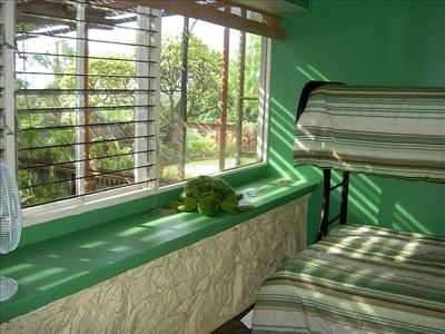 View of our green house & ocean from bedroom #4
