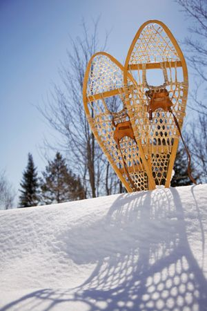 We provide two sets of snowshoes for your enjoyment.