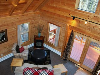 Harrison cabin photo - Main seating area with gas fireplace and view of surrounding woods