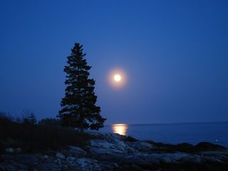 Clark Island cottage photo - The moon from the rocks