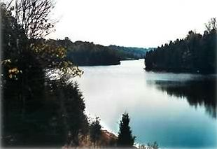 View of the Lake in late Fall (Lake is 150 yards from Cabin)
