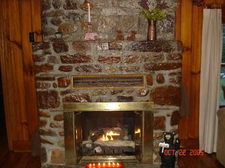 Brevard cottage photo - Stone creek gas fireplace