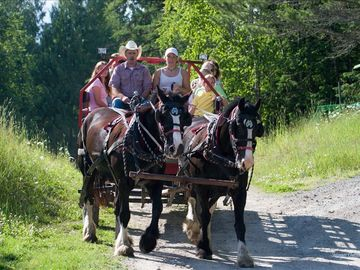 Horse drawn wagon rides and winter sleigh rides availble on the ranch
